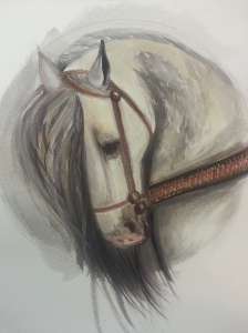 Warhorse watercolor, Stephanie Macera