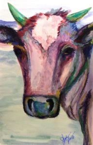 Buiser Cow Portrait