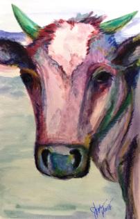 Buiser Cow Portrait