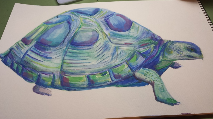 S. Macera Mertyle Turtle watercolor