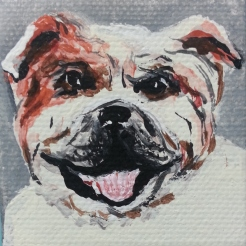Bulldog pet portrait, acrylic, S. Macera, Lovingcolor.net