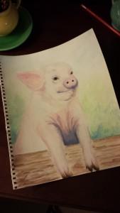 Stephanie Macera, Piglet watercolor painting