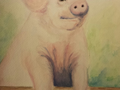 Stephanie Macera, Piglet painting with watercolor