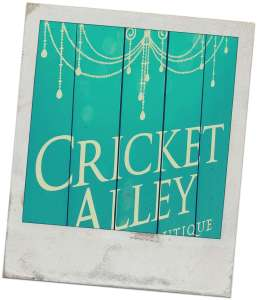 Cricket alley logo