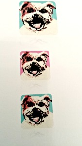 Macera bulldog painting with colored backgrounds. Lovingcolor.net