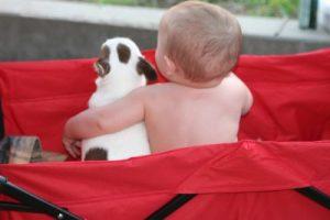 baby and dog, S. Macera lovingcolor.net
