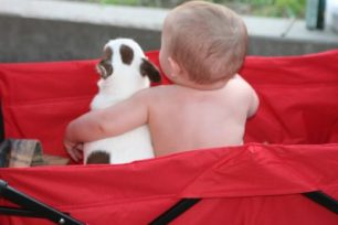 baby and dog, S. Macera lovingcolor.net