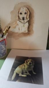 Moxie, pet portrait order